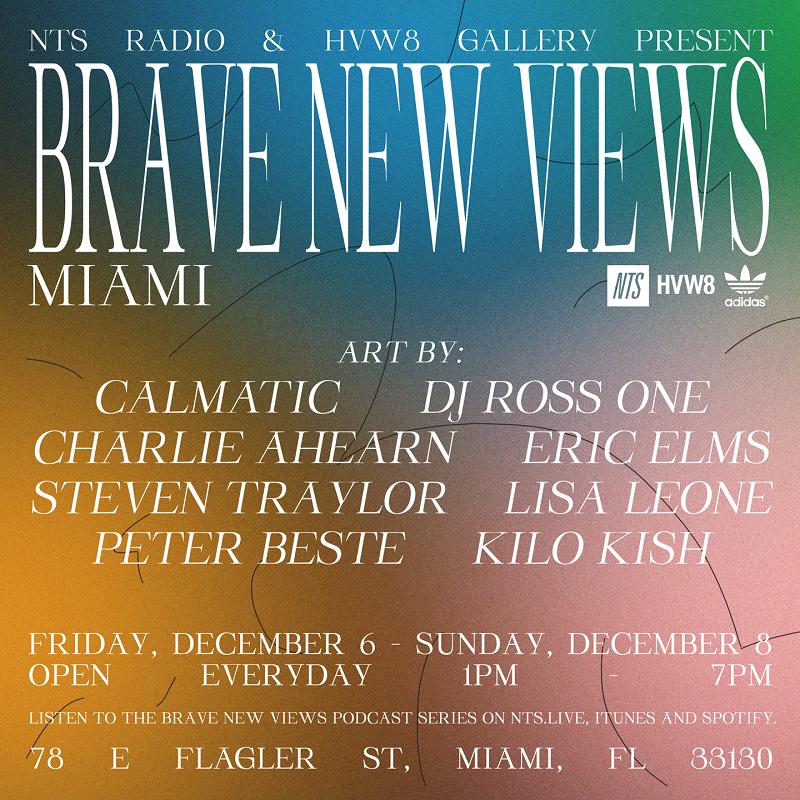 NTS & HVW8 Present Brave New Views: Miami events Image